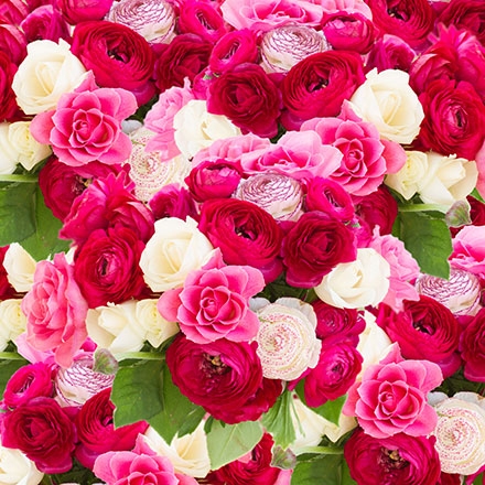 Ensemble of Roses